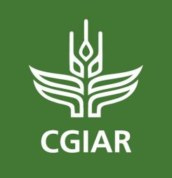 Meet CGIAR scientists at ICRD 2017
